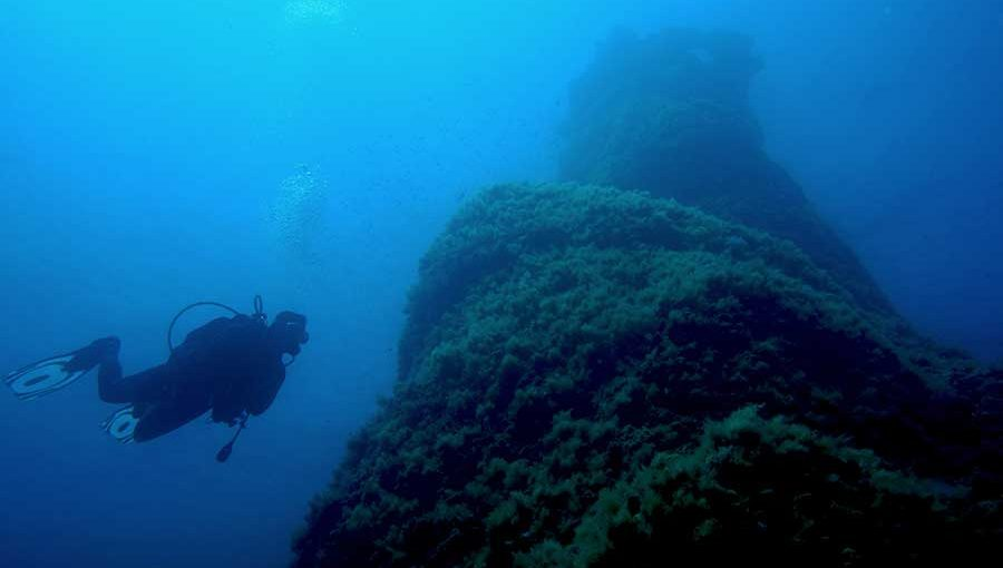 buceo en Menorca, diving in Menorca