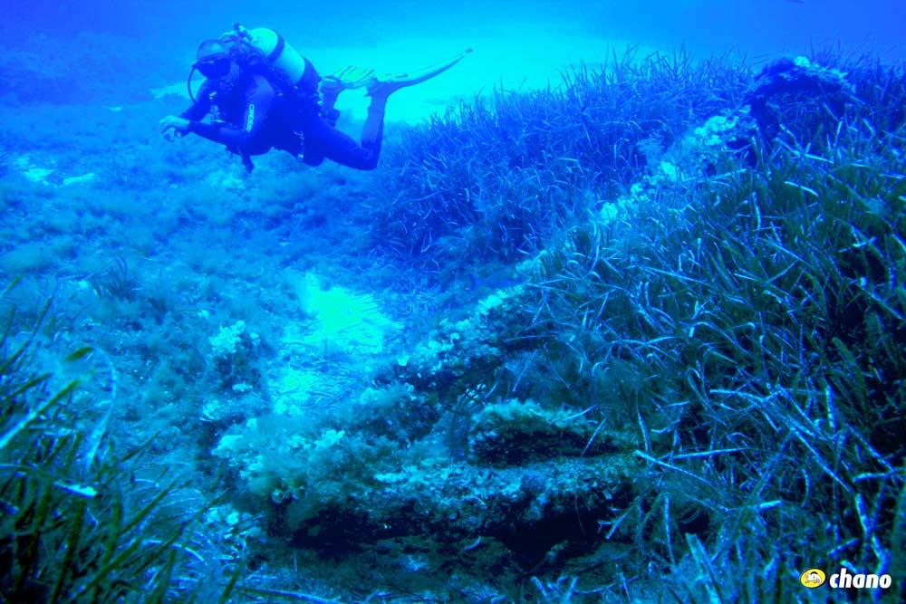 buceo en Menorca, diving in Menorca.