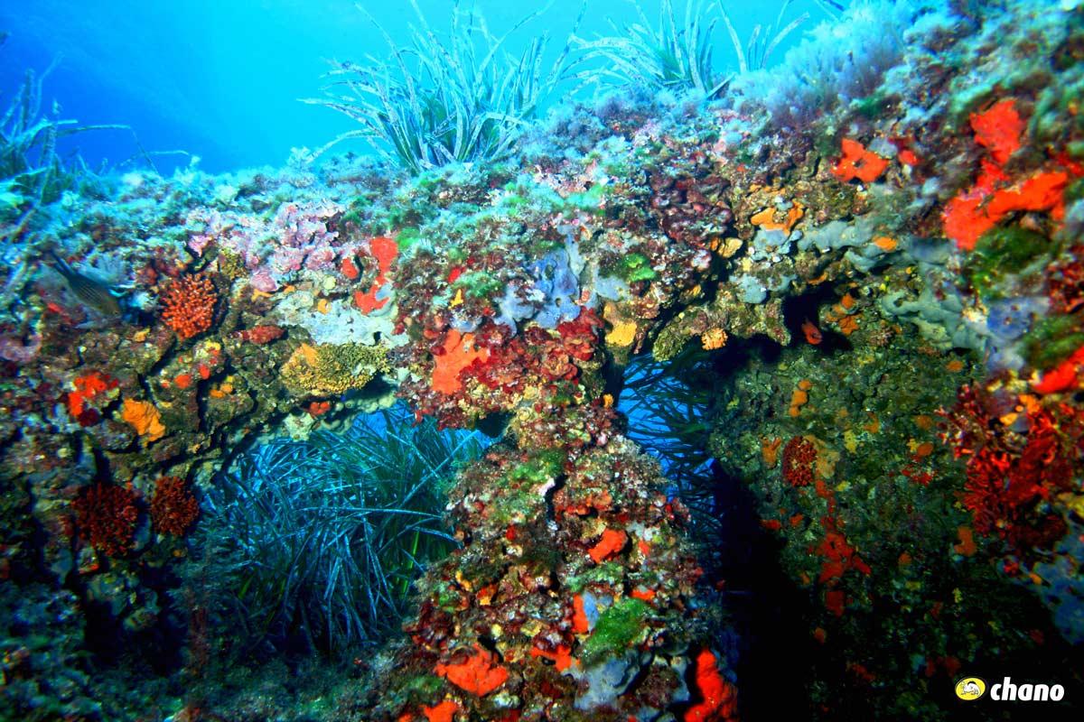 Colores y visibilidad en Menorca, Colors and visibility in Menorca.
