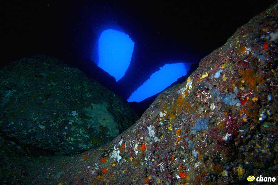 Dives in Menorca, submarinismo en Menorca