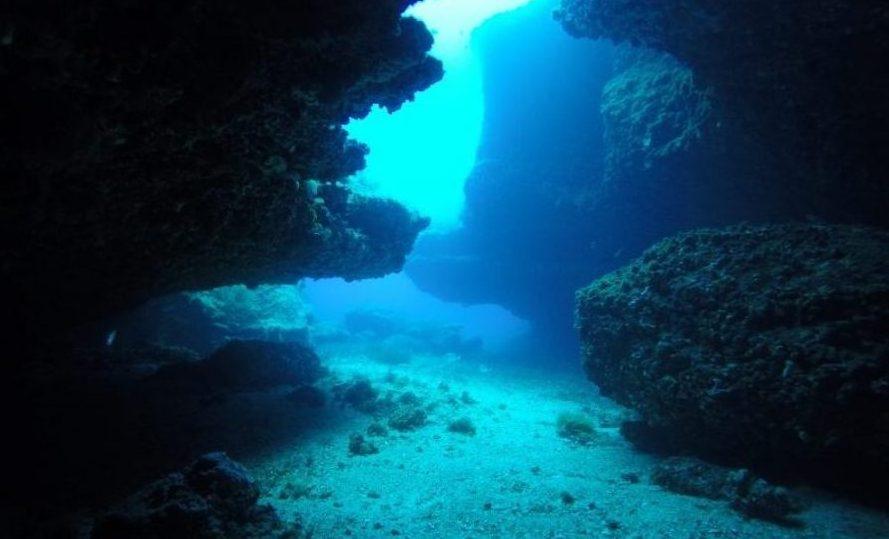 buceo en isla del aire menorca coral galery