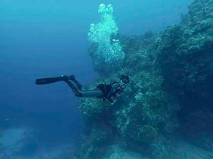 diving in Menorca, buceo en Menorca